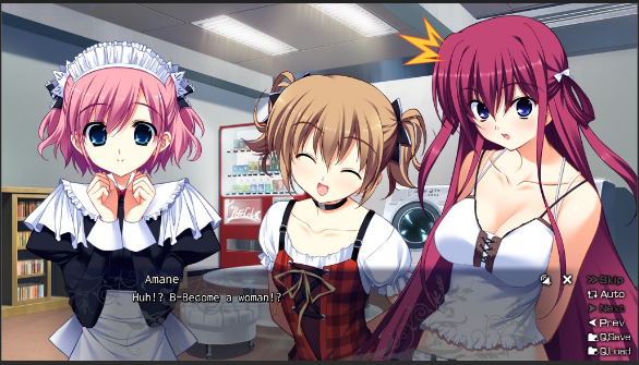 The Fruit Of Grisaia Download game